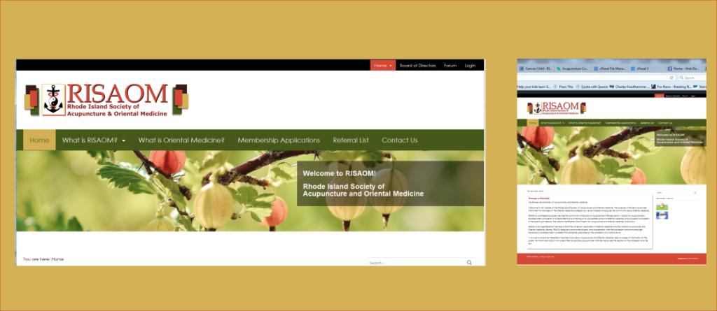 portfolio risaom - web designs by chris
